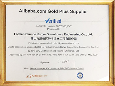 Alibaba Certification
