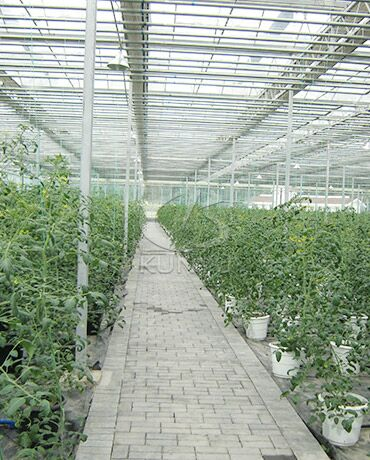 Other Greenhouse