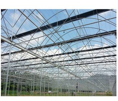 Ventilation Management of Greenhouse In Spring
