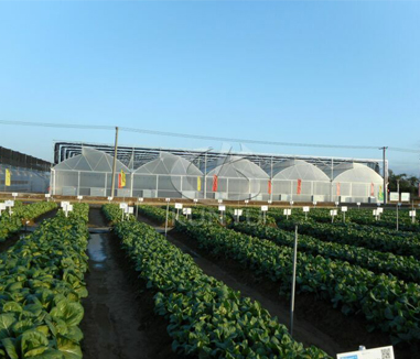 How Can Greenhouse Production Sites be Used for Leisure Agriculture?