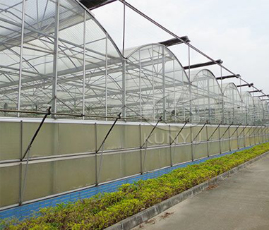 Advantages of a Polycarbonate Greenhouse