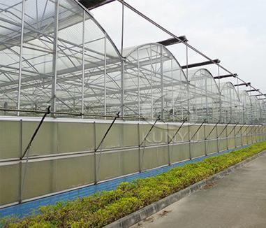 Do Green Plastic Greenhouses Work?